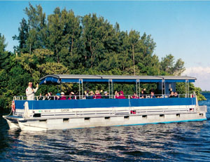 Indian River Lagoon and Swampland Boat Tours Fort Pierce FL - South Florida Wildlife Boat Tour, Dolphin, Manatee, Birds, Turtles, Fish and more.