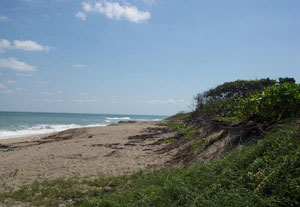 Secluded beach on Hutchinson Island Florida
