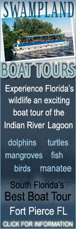 Indian River Lagoon and Swampland Boat Tours of Fort Pierce FL See Florida Wildlife at it's best Dolphin manatee, birds