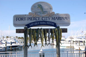Serpent 6 Charters, Deep Sea Sports Fishing Charters, Fort Pierce FL