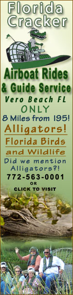 Airboat Rides Vero Beach - See Alligators, Florida Birds and wildlife.