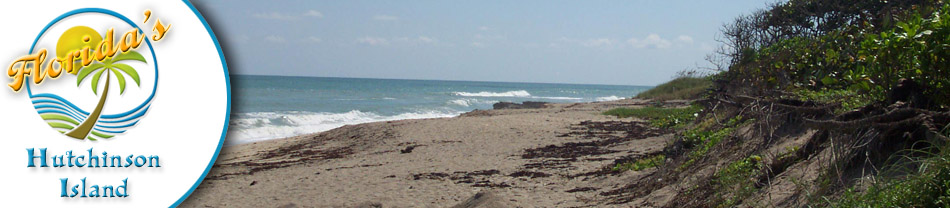 Hutchinson Island Florida, Beaches