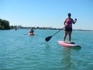 Kayak and Paddleboard Tours on Hutchinson Island, Kayak & Paddleboard rentals also available.