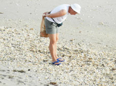 SHELLING & BEACHCOMBING ON HUTCHINSON ISLAND