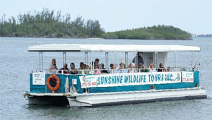 Sunshine Wildlife Tours, Eco Tours Stuart Florida
