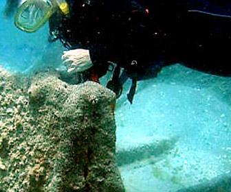 Bathtub Reef At Beach Hutchinson Island